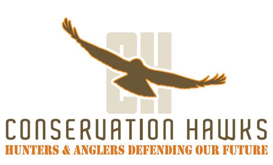 Conservation-Hawks_web