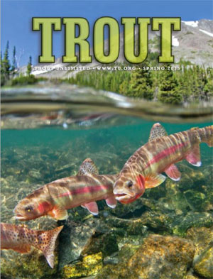 4_15_trout_mag