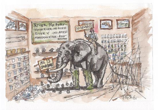 7-15_elephant