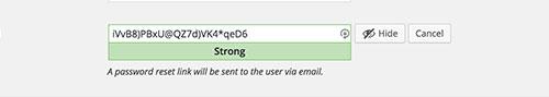 wp-43-password