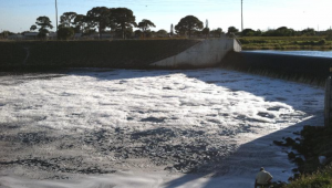 Polluted freshwater discharge flowing over a spillway on Taylor Creek in Fort Pierce, FL. Photo: Dr. Zack Jud - Florida Oceanographic Society