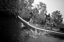 jungle_fishing