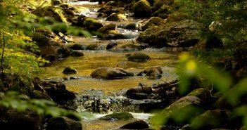 headwater_stream