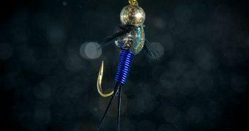 Blue_Copper_John