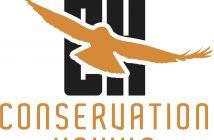 conservation_hawks